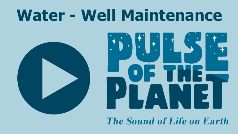 Pulse of the Planet thumbnail